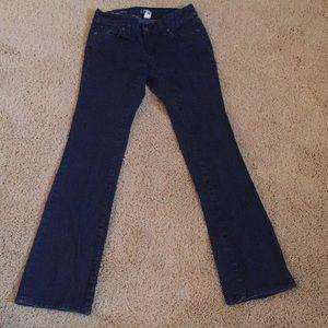 Loft 00P curvy boot dark denim jeans